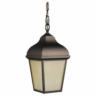 Bridport 1-Light Outdoor Hanging Lantern