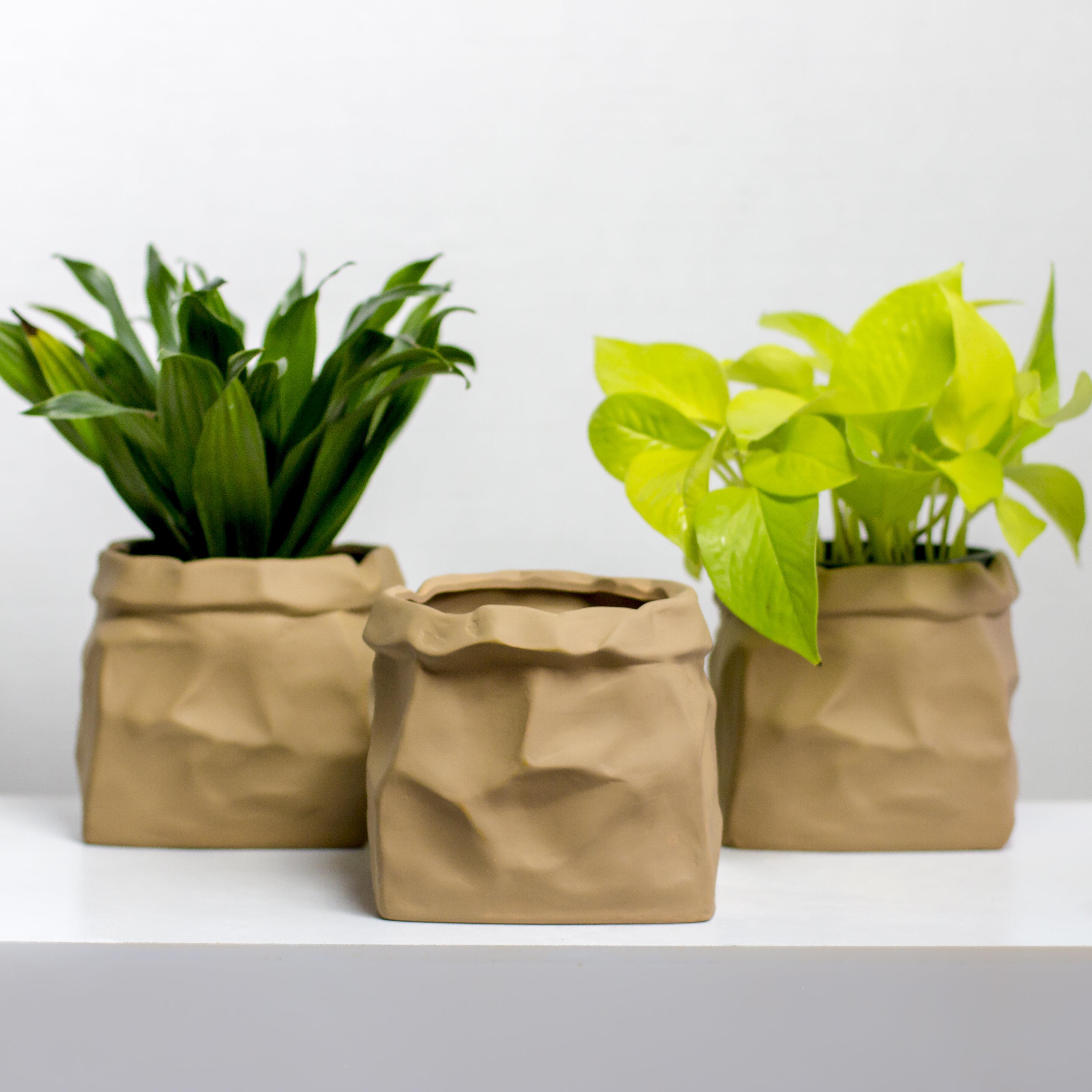Rosalind Wheeler Baraga Paper Bag Ceramic Pot Planter Reviews Wayfair