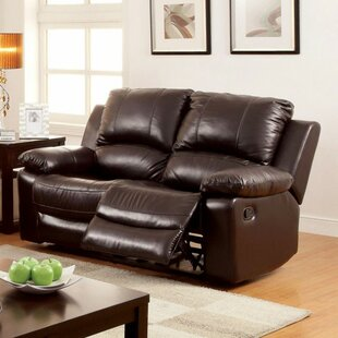 Efrain Motion Reclining Loveseat