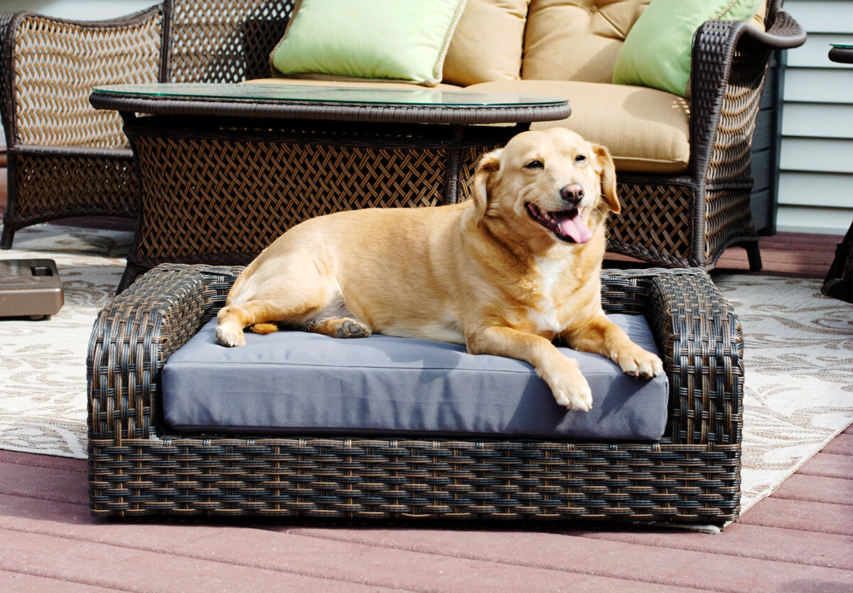 Pastrana Rattan Dog Sofa