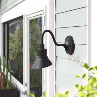 Markeith 1-Light Outdoor Barn Light