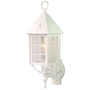 Highland Dunes Joy Outdoor Sconce