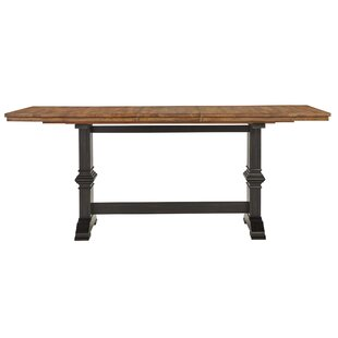 Brierfield Counter Height Extendable Solid Wood Dining Table by Three Posts