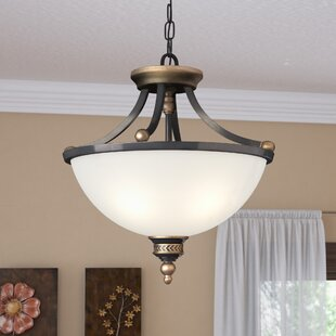 Darby Home Co Westerville 2-Light Bowl Pendant