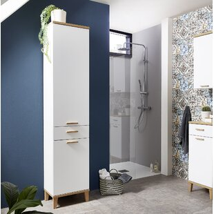 Guadalupe 39cm W X 201cm H Wall Mounted Cabinet By Isabelline