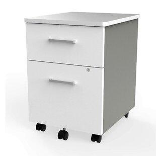 Symple Stuff Lampert 2-Drawer Mobile Vertical Filing Cabinet