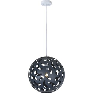 Chien 1-Light Globe Pendant by Wrought Studio