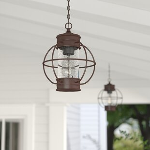 Nayeli 1-Light Outdoor Metal Hanging Lantern by Breakwater Bay