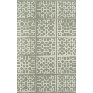 Azaiah Handwoven Flatweave Green Indoor/Outdoor Area Rug
