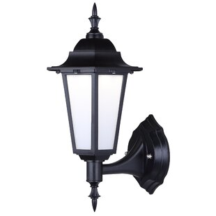 Mcgee LED Plastic Outdoor Wall Lantern