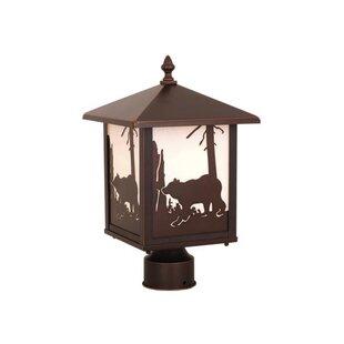 Loon Peak Josefina Bear Outdoor 1-Light Lantern Head