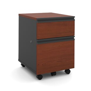 Kenworthy 2-Drawer Mobile Pedestal by Ebern Designs Top Reviews