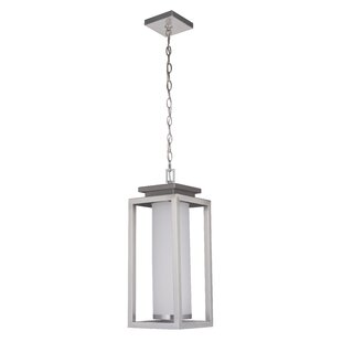 Affordable Price Landes 1-Light Outdoor Pendant By Latitude Run