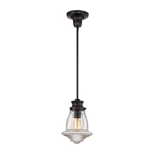 Darby Home Co Swearingen 1-Light Novelty ..