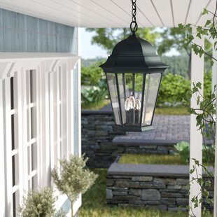 Darby Home Co Gregoire 3-Light Outdoor Hanging Lantern