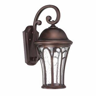 Fleur De Lis Living Berube 1-Light Outdoor Wall Lantern