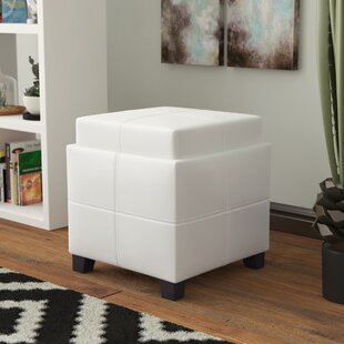 Ellingson Storage Ottoman by Latitude Run