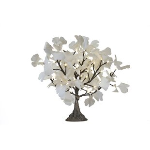 Arclite Inc Gingko Tree 24