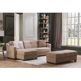 Casnovia 94 Reversible Sleeper Sectional with Ottoman by Latitude Run