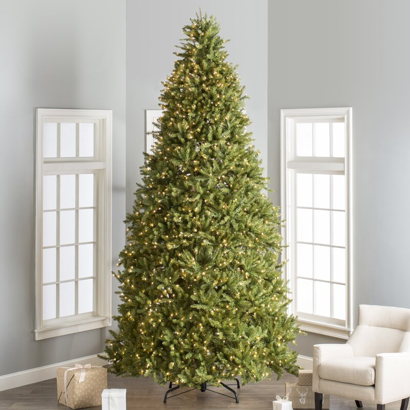 fir 12 hinged green artificial christmas tree with 1500 clear lights