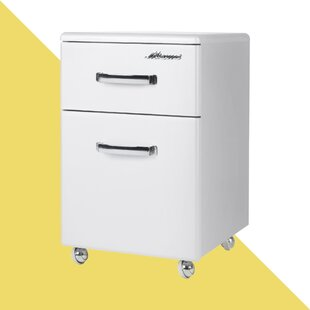 Rische Vertical Filing Cabinet By Hashtag Home