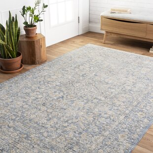 Bianca Rug Wayfair