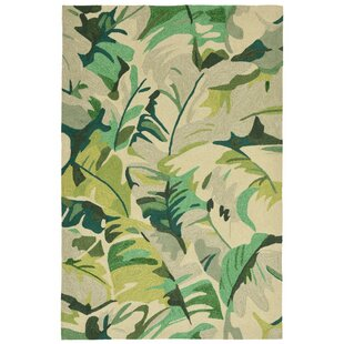 Rachael Hand-Tufted Green Indoor/Outdoor Area Rug