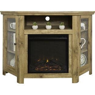 Indoor Fireplaces- Styles for your home | Joss & Main