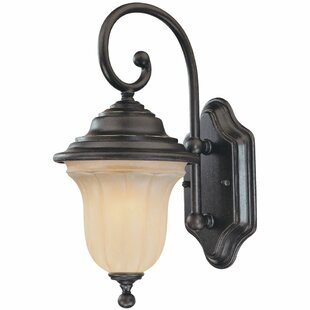 Teminot 1-Light Outdoor Wall Lantern by Bloomsbury Market Great Reviews