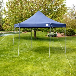 Alvah12Ft.Wx12Ft. DSteel Pop-Up Canopy by Freeport Park