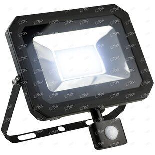 Scottsville 1-Light Flood Light With PIR By Sol 72 Outdoor