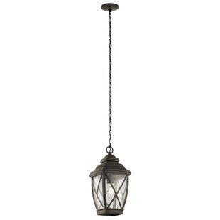Best Price Sunnydale 1-Light Outdoor Hanging Lantern By Darby Home Co