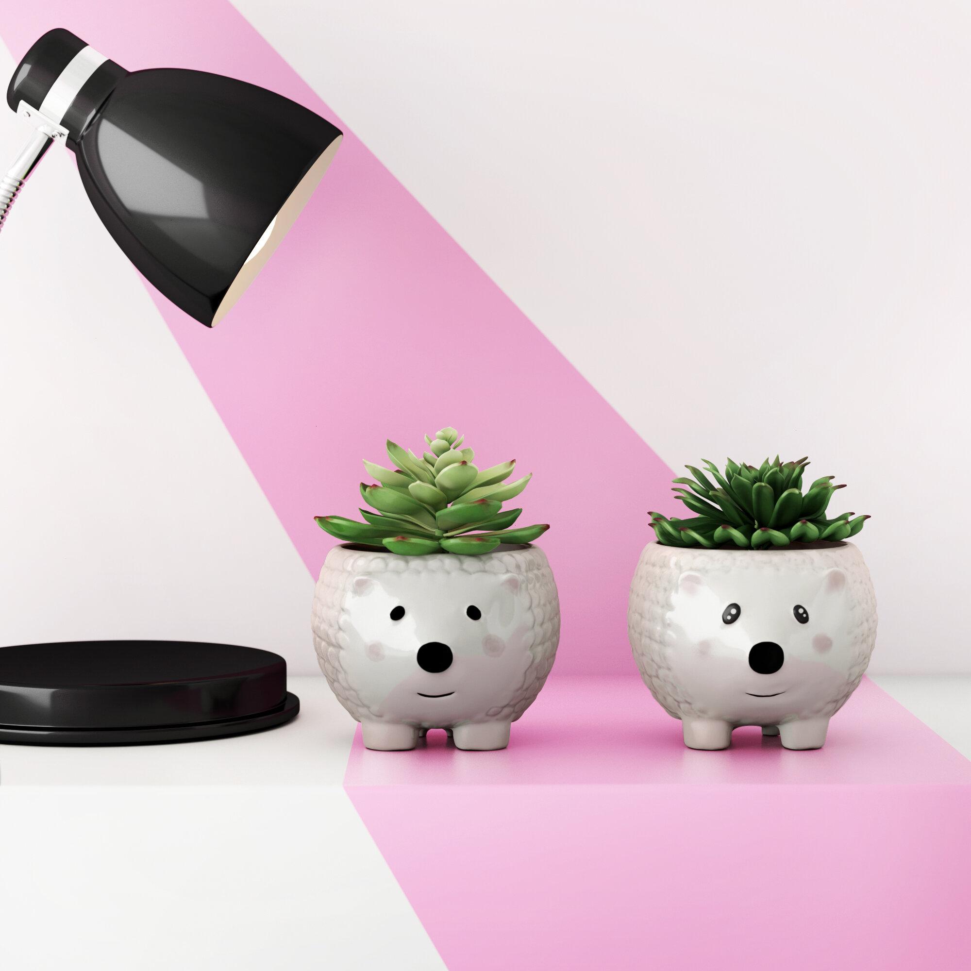 Hashtag Home 2 Piece Faux Hedgehog Ceramic Agave Plant In Planter Set Reviews Wayfair