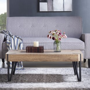 Vincente Coffee Table Union Rustic