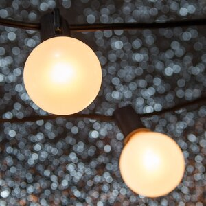 15-Light Globe String Lights