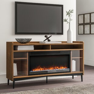 Inexpensive Gutierrez TV Stand for TVs up to 60 with Fireplace by Ivy Bronx Reviews (2019) & Buyer's Guide