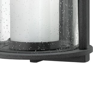Darby Home Co Ardean 1-Light Outdoor Wall Lantern