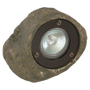 Moonrays 1-Light Spot Light