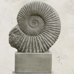 Campania International Ammonite Statue