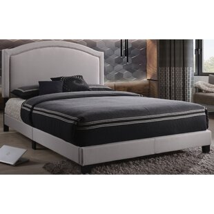 Alcott Hill Eliora Queen Upholstered Panel Bed