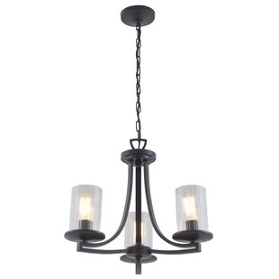 Essex Special Edition 3-Light Shaded Chandelier by DVI