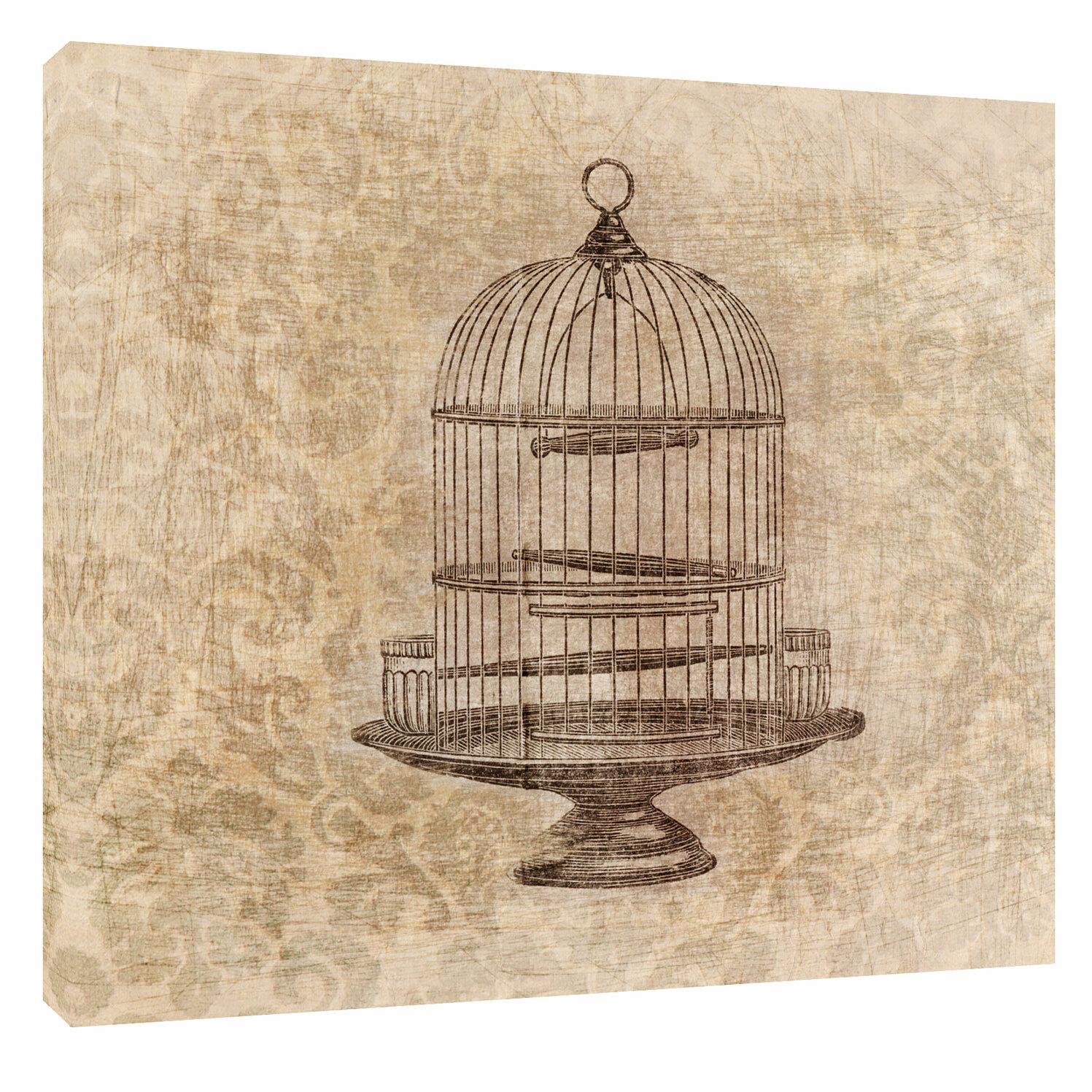 Ptm Images Birdcage Graphic Art On Wrapped Canvas Wayfair