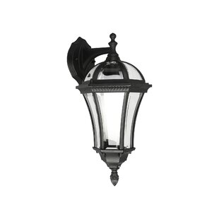 Hafer 1 Light Outdoor Wall Lantern Image