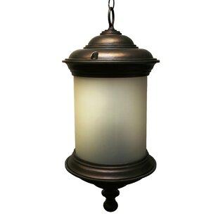 Alcott Hill Phillipstown 4-Light Outdoor Pendant