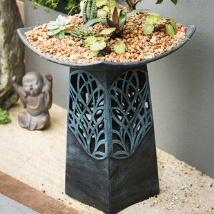 Evergreen Enterprises, Inc Intricate LED Lighted Birdbath