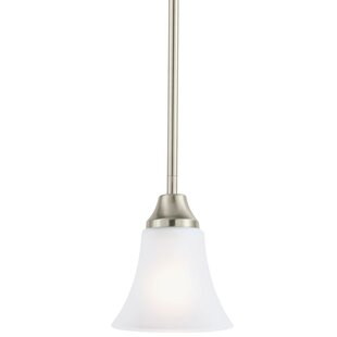 Darby Home Co Buren 1-Light Cone Pendant