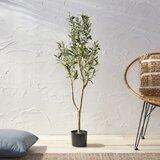 Aarav Artificial Olive Tree in Pot