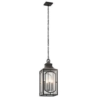 Darby Home Co Salena 4-Light Outdoor Pendant