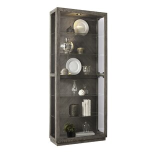 Aahil Lighted Curio Cabinet by Ophelia & Co.