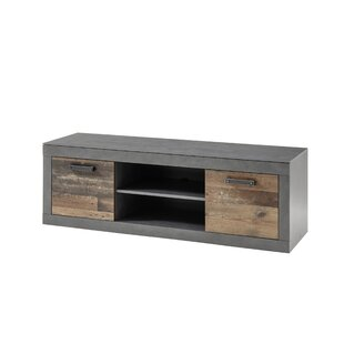 Finnley TV Stand For TVs Up To 50